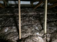 Loft Insulation completed