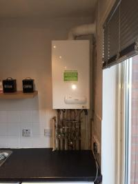 New Boiler Installation