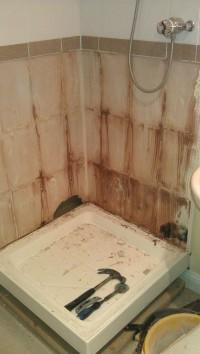 Leak in shower