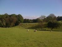 Broad Close Farm 03