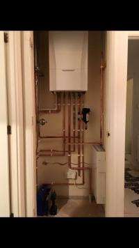 Ideal boiler in Exmouth